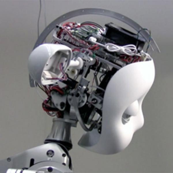 Simon Humanoid Robot, 2009