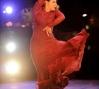 Nelida Tirado, photography by Jack Hartin, courtesy of New World Flamenco Festival,