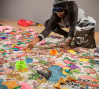 Ebony G. Patterson installing the exhibition Ebony G. Patterson: Dead Treez at the John Michael Kohler Arts Center, 2015
