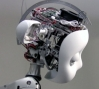 Simon Humanoid Robot, 2009: Mechanical design and photo credit: Meka Robotics