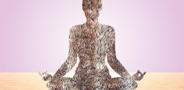 JF & SON: Mindfulness and Mediation of Our Things, 2013, image courtesy of the artist