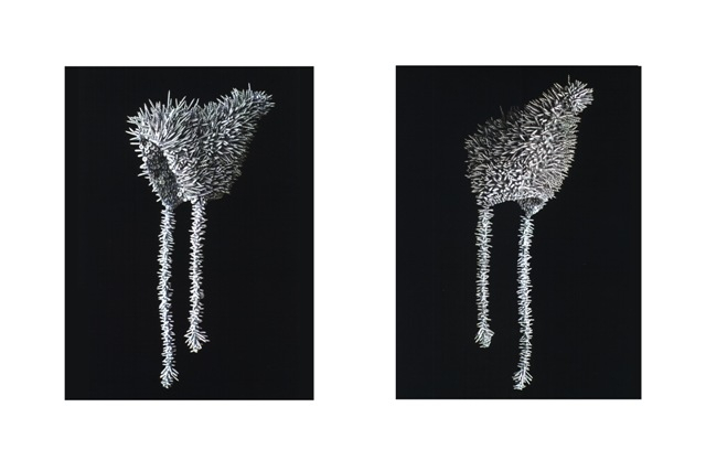Two views of Baby Bonnet, 1998.